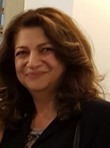 Hamideh Afsarmanesh